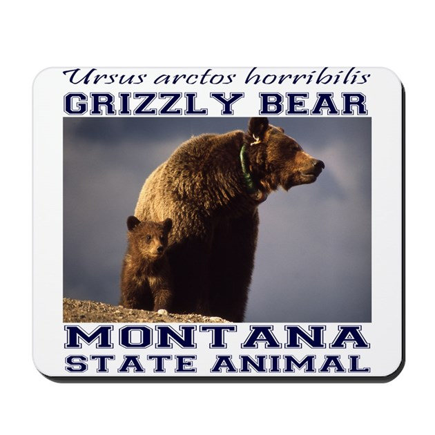 Grizzly Montana State Animal Mousepad By Sportsmanhill