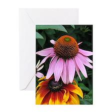 Summer Sunflower BIRTHDAY Card (1)
