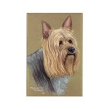 Silky Terrier Rectangle Magnet (10 pack)