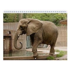 African Elephant 004 Wall Calendar