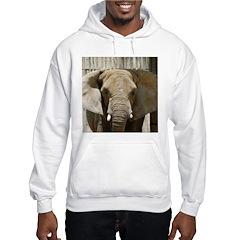 African Elephant 005 Hoodie