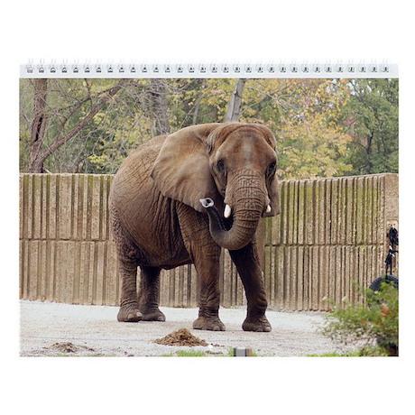 African Elephant 006 Wall Calendar