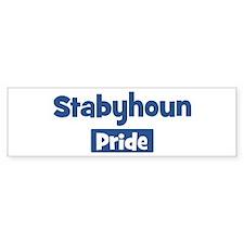 Stabyhoun pride Bumper Bumper Sticker