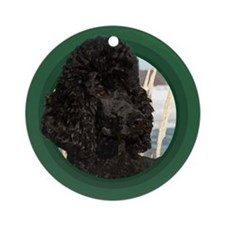 Black Poodle Green Round Ornament