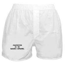 Protected by Sussex Spaniel Boxer Shorts