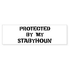 Protected by Stabyhoun Bumper Bumper Sticker