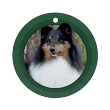 Tri-Color Sheltie Green Round Ornament