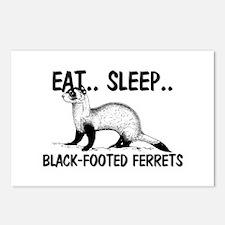 Eat ... Sleep ... BLACK-FOOTED FERRETS Postcards (