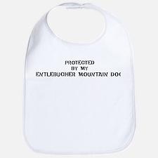 Protected by Entlebucher Moun Bib