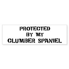 Protected by Clumber Spaniel Bumper Car Sticker