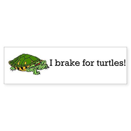 Brake for Turtles Bumper Sticker
