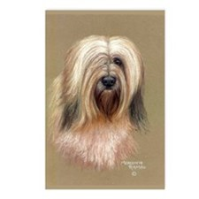 Tibetan Terrier Postcards (Package of 8)
