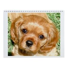 Cavalier King Charles Calendar