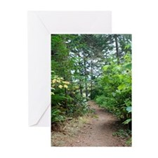 Overcast day on the trail Greeting Cards