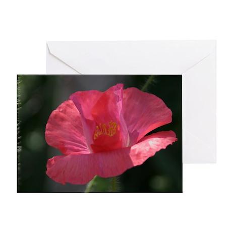 Pink Poppy Greeting Card