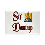 Sir Domingo Rectangle Magnet (10 pack)