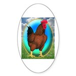 Broiler Opal Chicken Oval Sticker