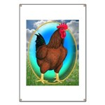Broiler Opal Chicken Banner