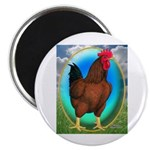 "Broiler Opal Chicken 2.25"" Magnet (100 pack)"