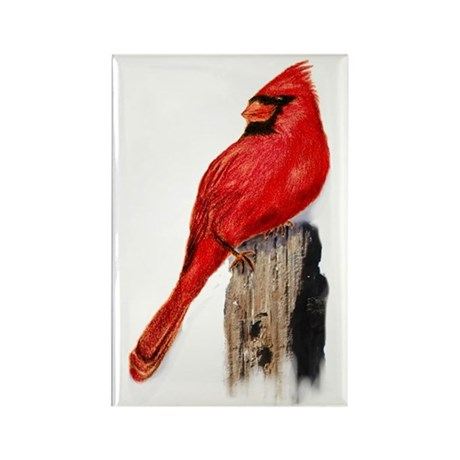 Cardinal on Post Rectangle Magnet