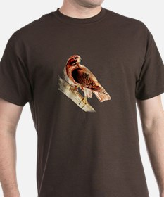 Red Hawk T-Shirt, brown