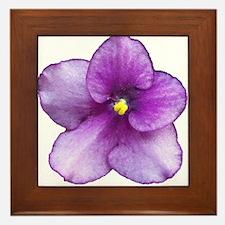 Beautiful Purple AV Framed Tile