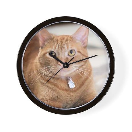 Abolish IRS Large Pet Bowl