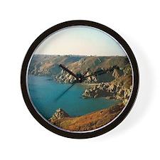 Unique New zealand nature photography Wall Clock