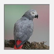 Congo African Grey Tile Coaster