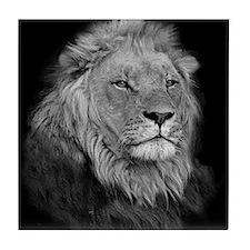 African Lion Tile Coaster