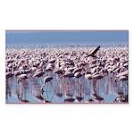 Flamingoes Rectangle Sticker