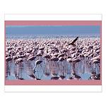 Flamingoes Small Poster