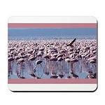 Flamingoes Mousepad