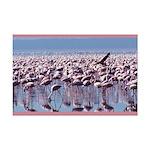 Flamingoes Mini Poster Print