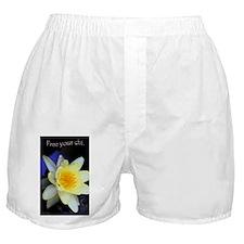 Unique Lily Boxer Shorts