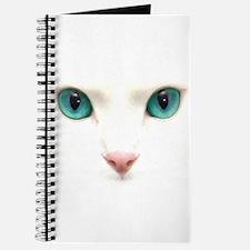 Krissy Journal