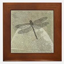 Dragonfly on leaf Framed Tile