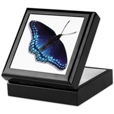 Red Spotted Purple Butterfly Keepsake Box