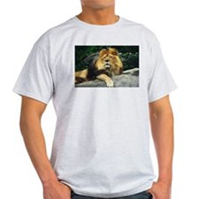Male Lion Ash Grey T-Shirt