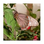 Butterfly Tile Coaster
