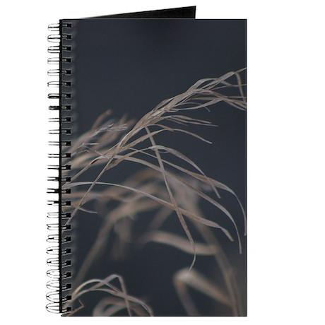 Winter Grass Journal