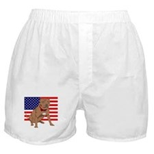 Red Nose Pit Bull USA Flag Boxer Shorts