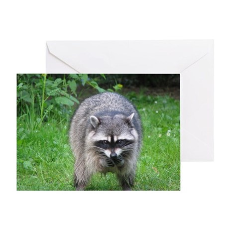 Raccoon with Yummy Food BIRTHDAY Card (1)