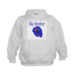 Hot Air Balloon Big Brother Hoodie
