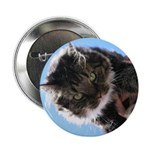 Kitty owns you Button