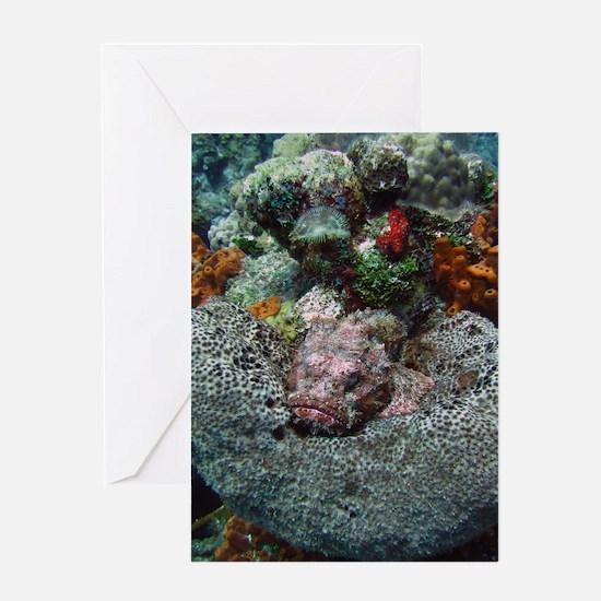 Blank Stone Fish Greeting Card