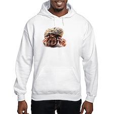 Hermit Crab Hoodie