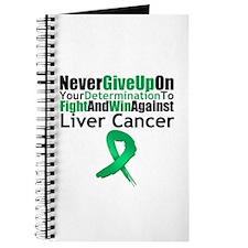 LiverCancerFight Journal