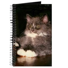 Mr. Fluffy Journal