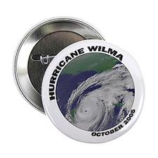 Satellite Hurricane Wilma Button